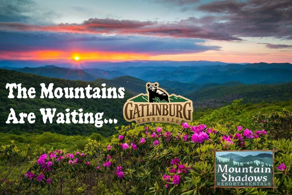 The Mountains Are Waiting with Smoky Mountain sunrise